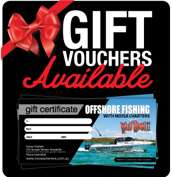 Noosa Charters Offshore Fishing Gift Vouchers
